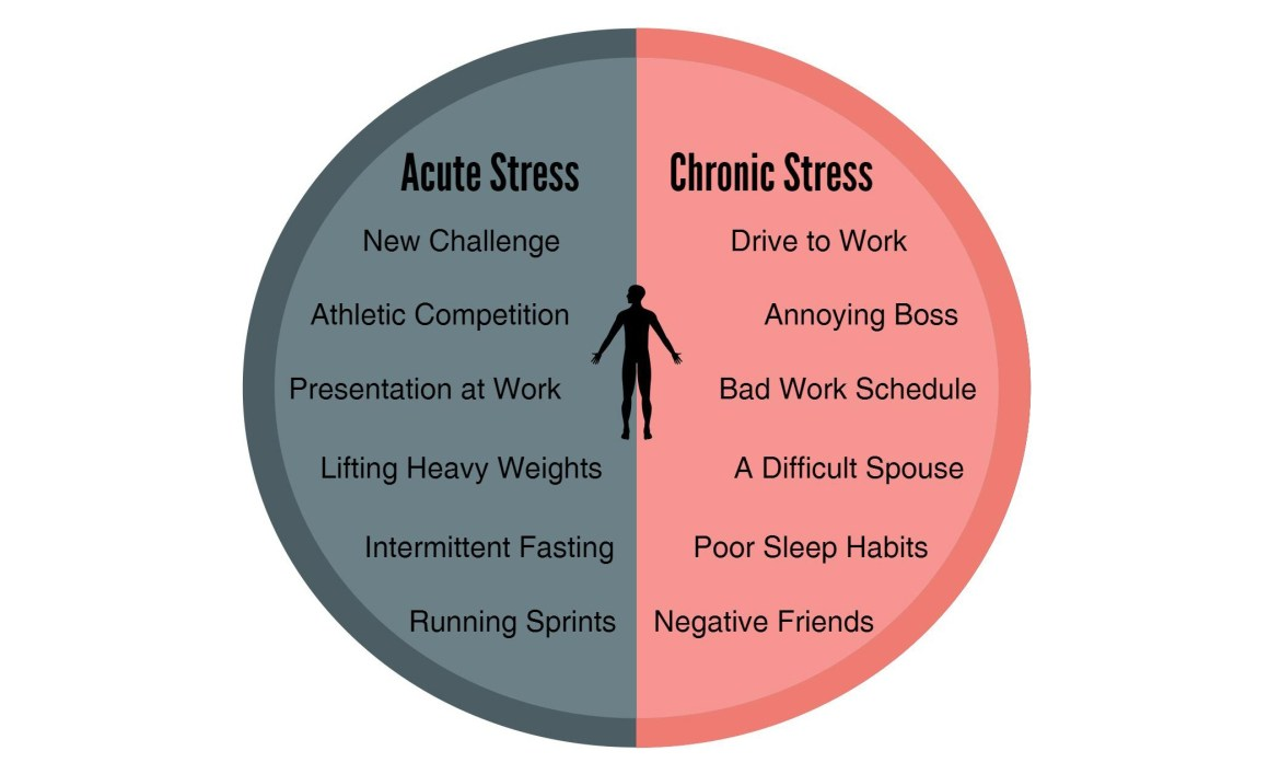 acute vs chronic stress header