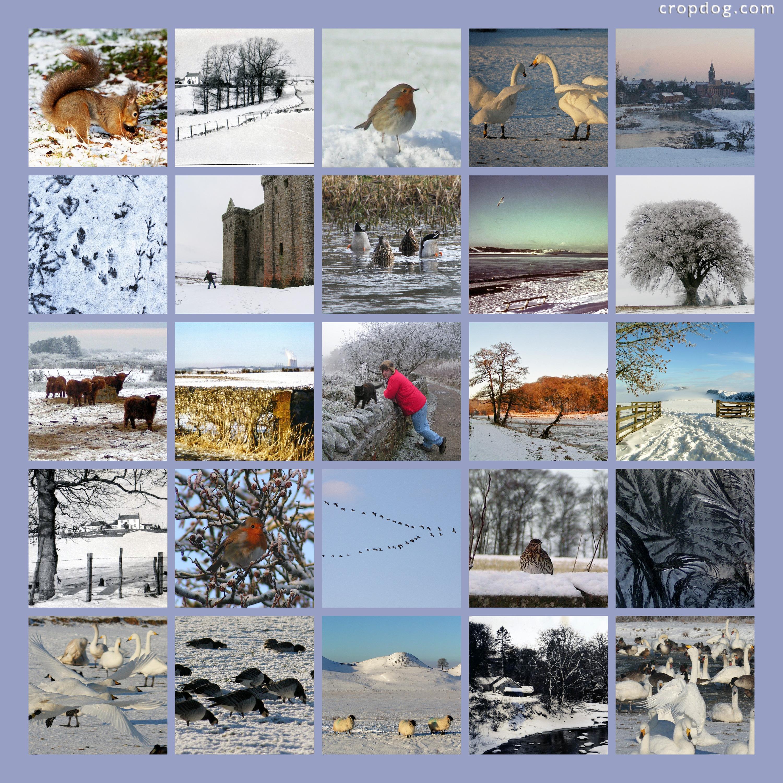 Terrific Adults Photo Collage Ideas Girlfriend Winter Photo Collage Ideas Cropdog Photo Collage Photo Collage Ideas ideas Photo Collage Ideas
