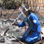 Marzo de 2008. Operaciones de desminado en Mozambique llevadas a cabo por The HALO Trust, uno de los operadores civiles de desminado. Foto ICBL