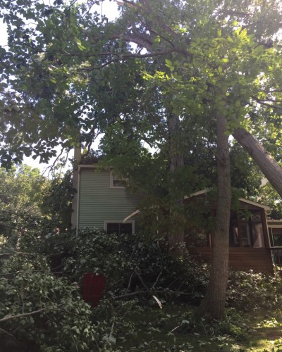 Fallen tree limbs damaging a house in need of emergency tree service
