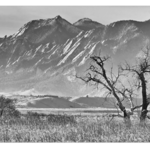 """Boulder Colorado Snowy Front Range View In Black and White 32""""x48""""x1.25"""" Premium Canvas Gallery Wrap"""