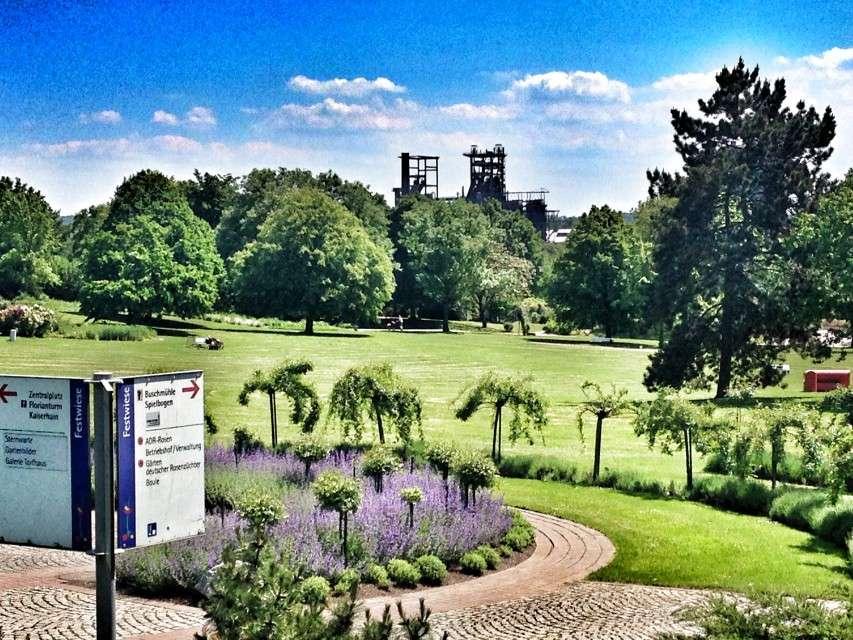 Die 10 schönsten Parks und Naherholungsgebiete im Ruhrgebiet
