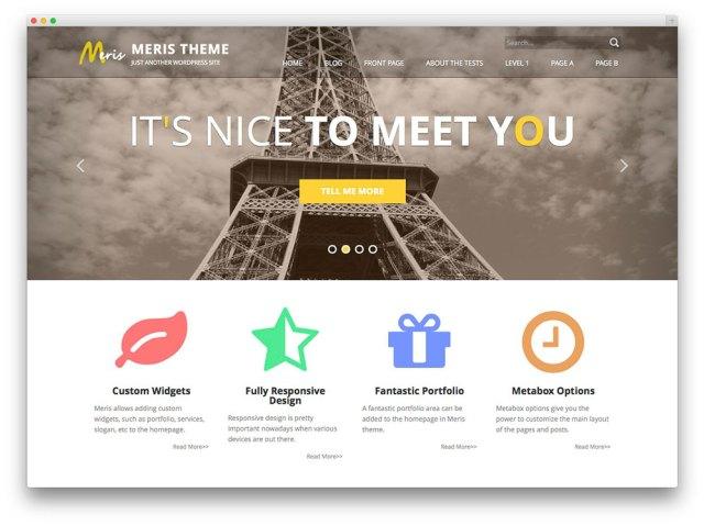Meris - free WordPress theme