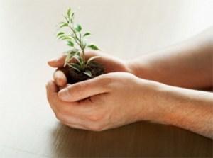 negocio-crecimiento-comercio-sencillo