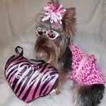 Fashion Friday: Mila My My's Model Style