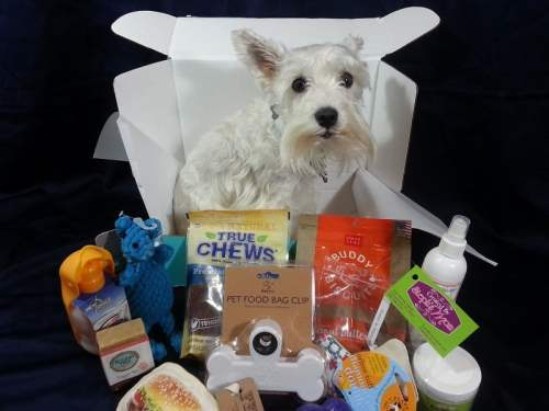 PawPack - Dog Subscription Box -