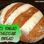 The Bread to Bring About World Peace: No Knead Artisan Cheddar Bread