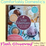 Comfortably Domestic's Scoop Adventures Flash Giveaway Winner!! #ICTScoopAdventures