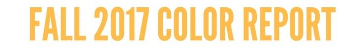 Copy of FALL 2017 Color REPORT (1)