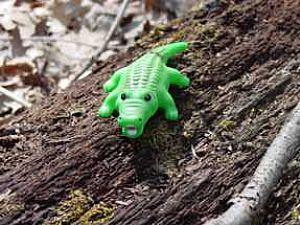 Birthday Alligator