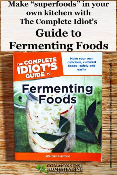 The Complete Idiot's Guide to Fermenting Foods Review