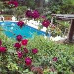 complejo_elvira-calamuchita-jardin-4