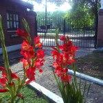 complejo_elvira-calamuchita-jardin-5