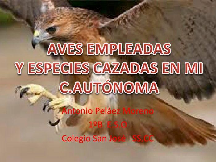 Antonio Peláez - Aves empleadas y especies cazadas en mi comunidad autónoma