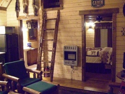 log cabin with ladder