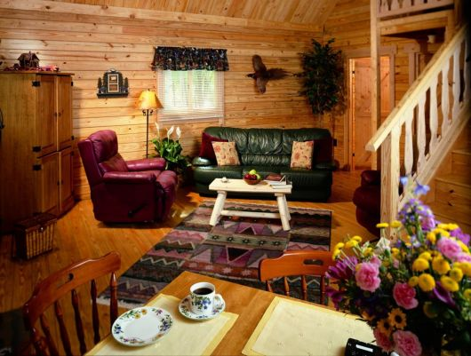 vacation log cabin living space
