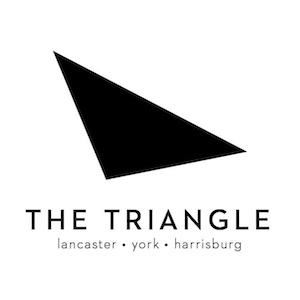 the triangle logo