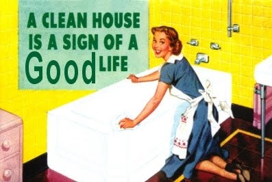 Top 10 reasons for cleaning our Homes!