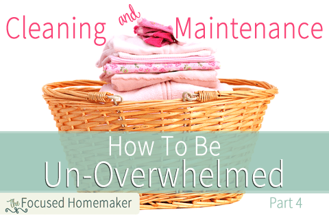 Cleaning & Maintenance ~ How To Be Un-Overwhelmed Part 4