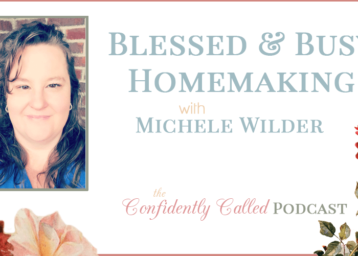 Blessed & Busy Homemaking with Michele Wilder Podcast-008