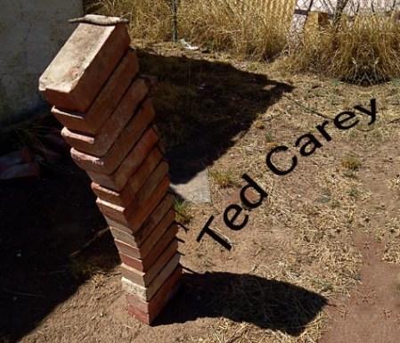 TedCarey