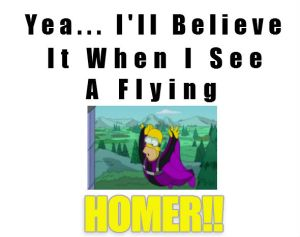flying homer
