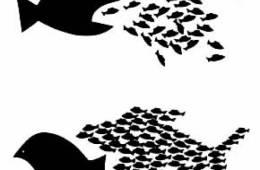 De la gestión de personas a la autogestión de organizaciones