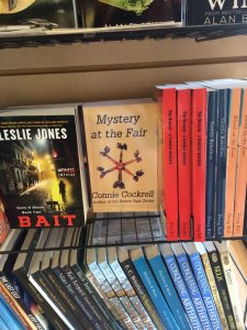 My book at Dog-Eared Pages Used Book Store
