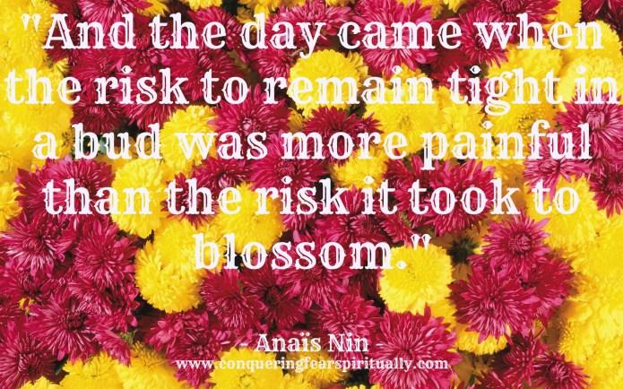 Anais Nin quote