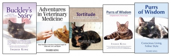 Ingrid-King-books