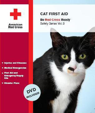 first-aid-for-cats