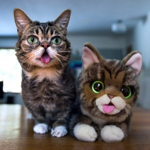 Lil_BUB_plush_toy