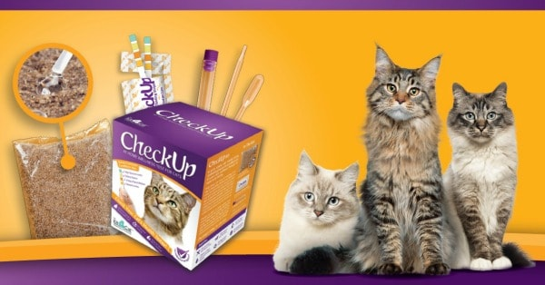 check-up-cat-test