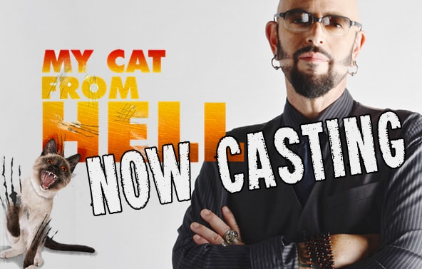 Jackson-Galaxy-my-cat-from-hell-casting