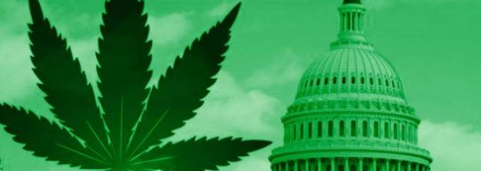 This Bill Will Finally End Cannabis Prohibition