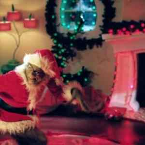 The Wait Is Over! ABC Family's  25 Days Of Christmas is Here!