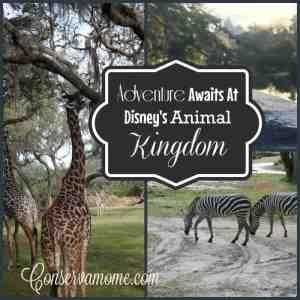 Adventure Awaits At Disney's Animal Kingdom