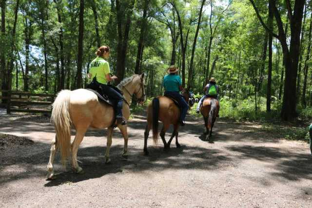 Horseback Riding (2)