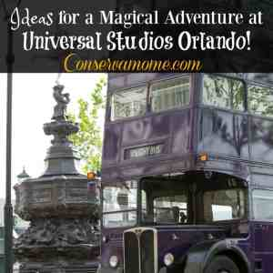 Ideas for a Magical Adventure at Universal Studios Orlando!
