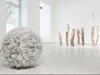Zuzanna Janin, Platan Gallery