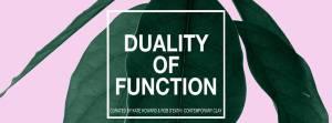 duality of fiction