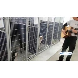 Small Crop Of Vance County Animal Shelter