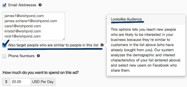 example-targeting lookalike audience