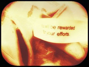 fortune cookie-rewarded for efforts