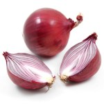 How to Cut an Onion [video lesson]