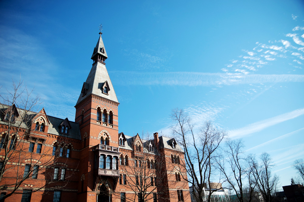 Seven committees, representing Cornell constituencies, determined the administrative and academic structure of the College of Business, administrators say.