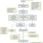 Cancer. Översikt över faktorer som bidrar till utvecklingen av cancer. T3/T4.