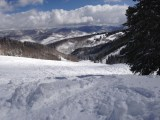 Powder in the Rose Bowl at Beaver Creek