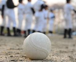 軟式野球ボール