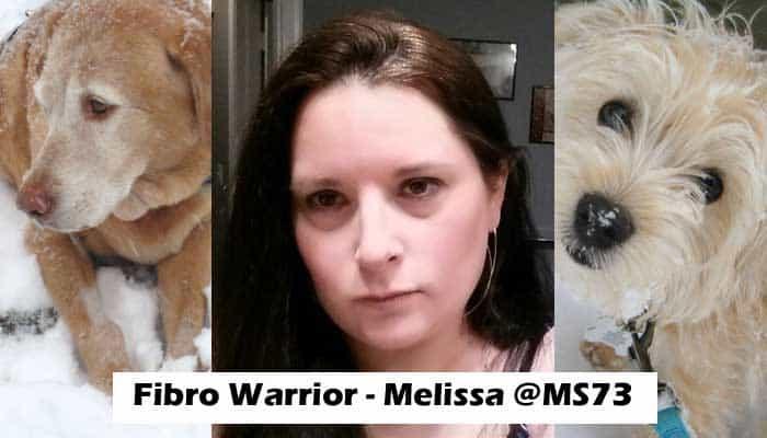 Melissa Fibro Warrior